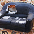 Old couch — Stockfoto