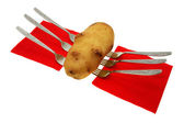 Potato. — Stock Photo