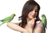 Parrot — ストック写真