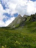 Mountain view from Schynige Platte, switzerland — Stock Photo