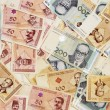 Stock Photo: Bosnimoney