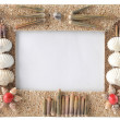 Series of seashells scattered around the frame — Stock Photo