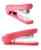 La spillatrice rosa isolata sopra bianco — Foto Stock