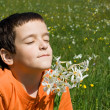 Boy smelling flowers — Stock Photo #10717394