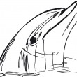 Sketch of dolphin face. vector illustration — Vettoriale Stock #10490150