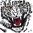 Sketch of white tiger. Vector illustration — Vector de stock