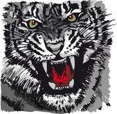 Desenho de tigre branco. ilustração vetorial — Vetorial Stock