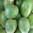 Green prickly pear - Stock Photo