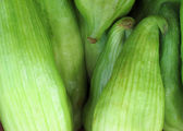 Fresh Caigua — Stock Photo