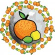 Orange & lemons illustration — Stock Vector