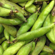 Fresh green bean species - Stock Photo