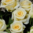Stock Photo: Bouquet of white roses and yellow