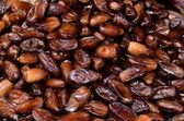 Dates sweet fruit — Stock Photo
