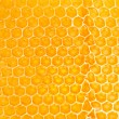 Yellow honeycomb — Stock Photo #10594694