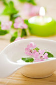 Little bowl and flowers — Stock Photo