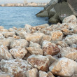 Stones on the Coast - Stock Photo
