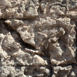 Stock Photo: Tuff Wall Texture