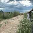 Country Road with Fence - Stock Photo