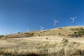 Windmill on a Hill — Stock Photo