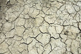 Cracked Mud — Stock Photo