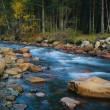 River in forest — Stock Photo
