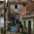Stock Photo: Favela: poverty and neglect