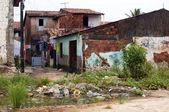 Favela: poverty and neglect — Stock Photo