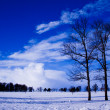 Winter in Russia.Magical landscape. — Stock Photo #10403374