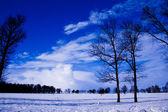Winter in Russia.Magical landscape. — Stock Photo