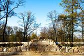 Antique granite bridge in green garden. — Stock Photo