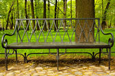 Carved iron bench in the garden. — Stock Photo