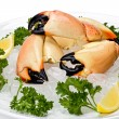 Stone Crab Claws (menippe mercenaria) — Stock Photo