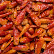 Dried Chilis — Stock Photo