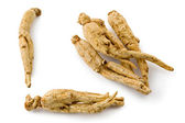 White Ginseng (Panax ginseng) — Stock Photo