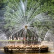 "Stock Photo: Fountain, ""Sun"""