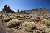 Teide volcano landscape — Stock Photo