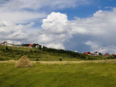 Green field at cloudy day landscape, in Zabljak, Montenegro — Stock Photo
