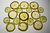 Lemon slices on white background — Stock Photo