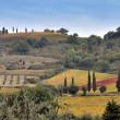 Tuscany fields — Stock Photo