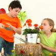Foto Stock: Friends Planting Flowers Together