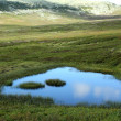 Stock Photo: Mountain Pond