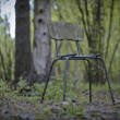 Stock Photo: Chair forestry