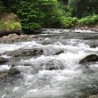 mountain river — Stock Photo #10631884