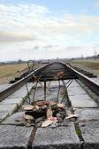 Auschwitz'de yahudi milletinin anıt süslenmiş demiryolu raylar — Stok fotoğraf
