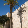 Stock Photo: Old walls of Jerusalem