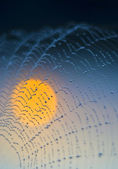 Sun on the web — Stock Photo