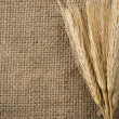 Wheat grain and sack as background - Stock Photo