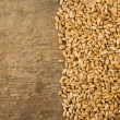 Wheat grain and wood background - Stock Photo