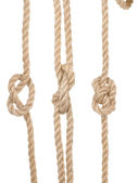 Ship ropes with a knot — Stock Photo