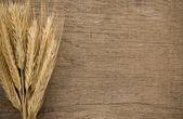 Ears spike of wheat on wood texture — ストック写真